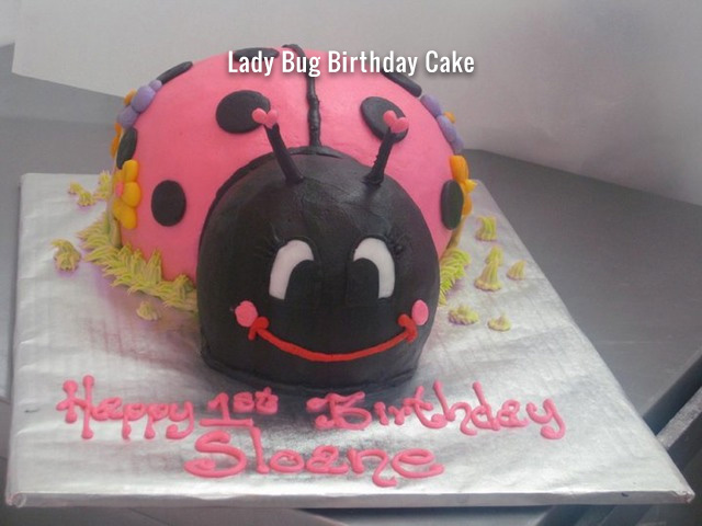lady-bug-birthday-cake